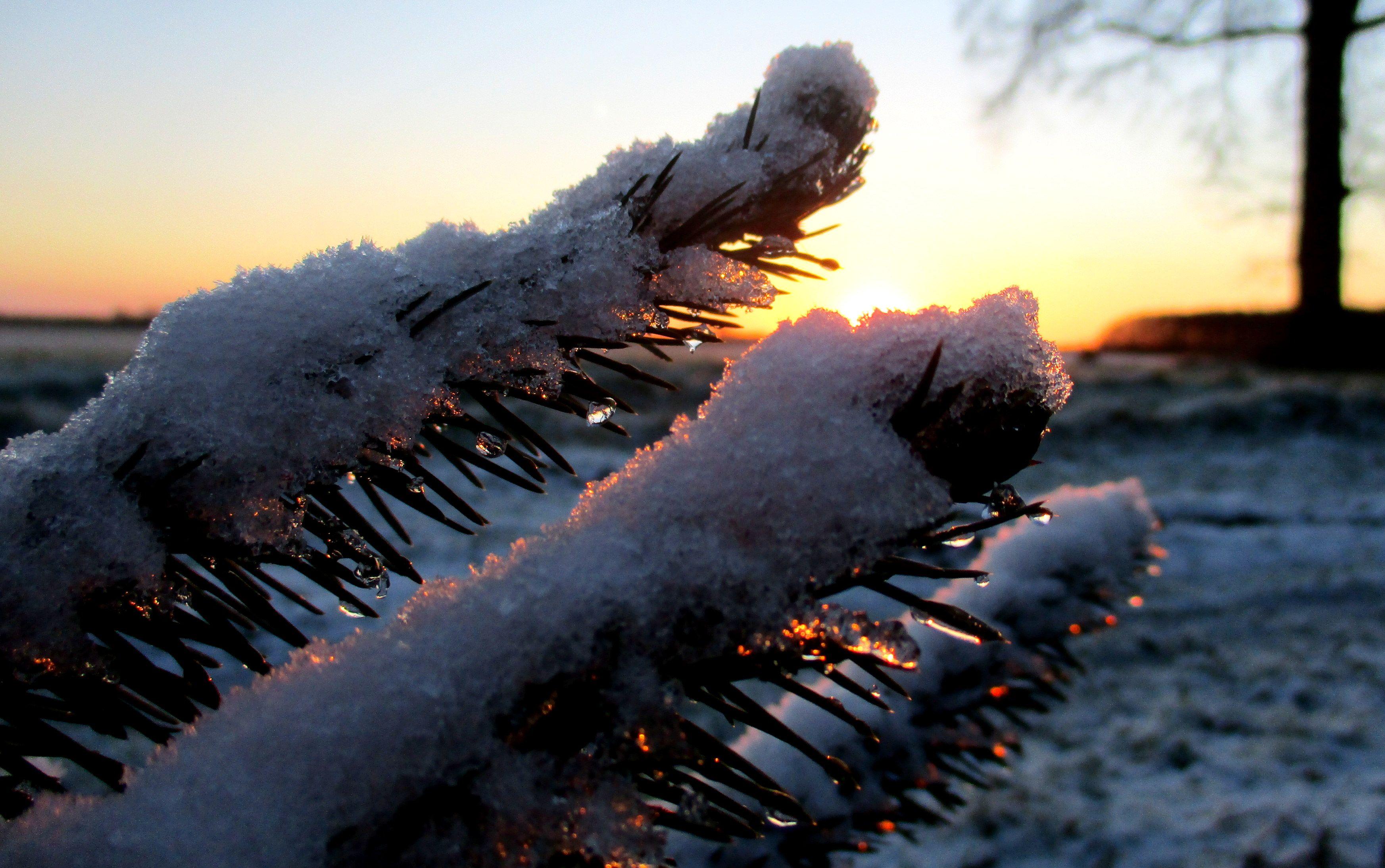 #dooi #now #schnee #sneeuw Foto: Joop van der Kaa, 17 januari 2016.