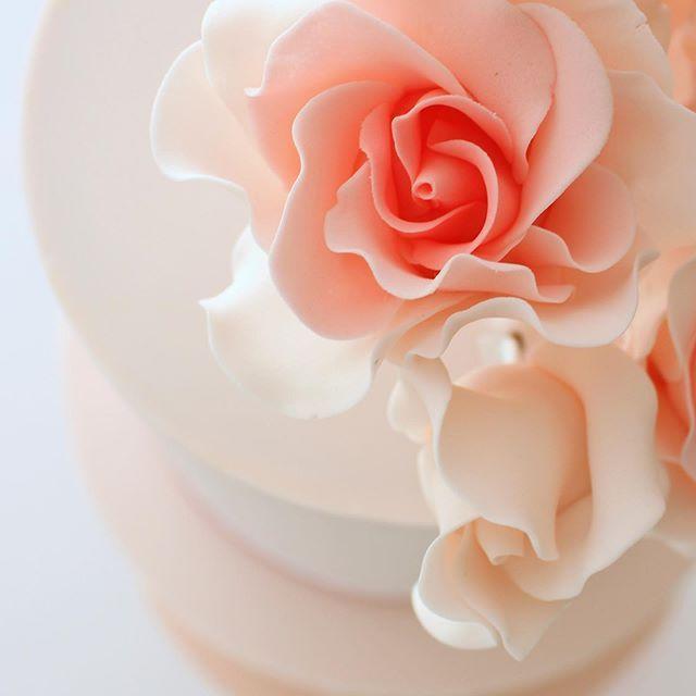 [New] The 10 Best Dessert Ideas Today (with Pictures) -  Una flor es una flor aún cuando no haya nadie que la observe. Aún cuando no exista nadie que huela su perfume.  Una flor es una flor aún cuando no haya quien disfrute sus colores. Aún cuando nadie aprecie sus texturas.  Una flor es simplemente una flor sin embargo... cuando la enlazo a las palabras una flor puede ser poesía. Puede ser canción. Puede ser un acto de valentía y un acto de amor.   #instacake #cakestagram #flowergram #instaflow