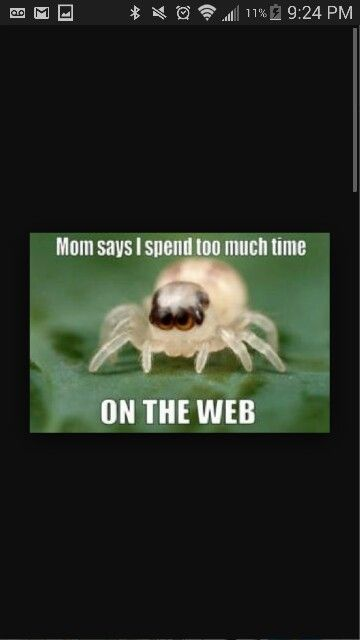 Pin By Bug Club On Bug Jokes Pinterest Jokes Bugs And Pest Control