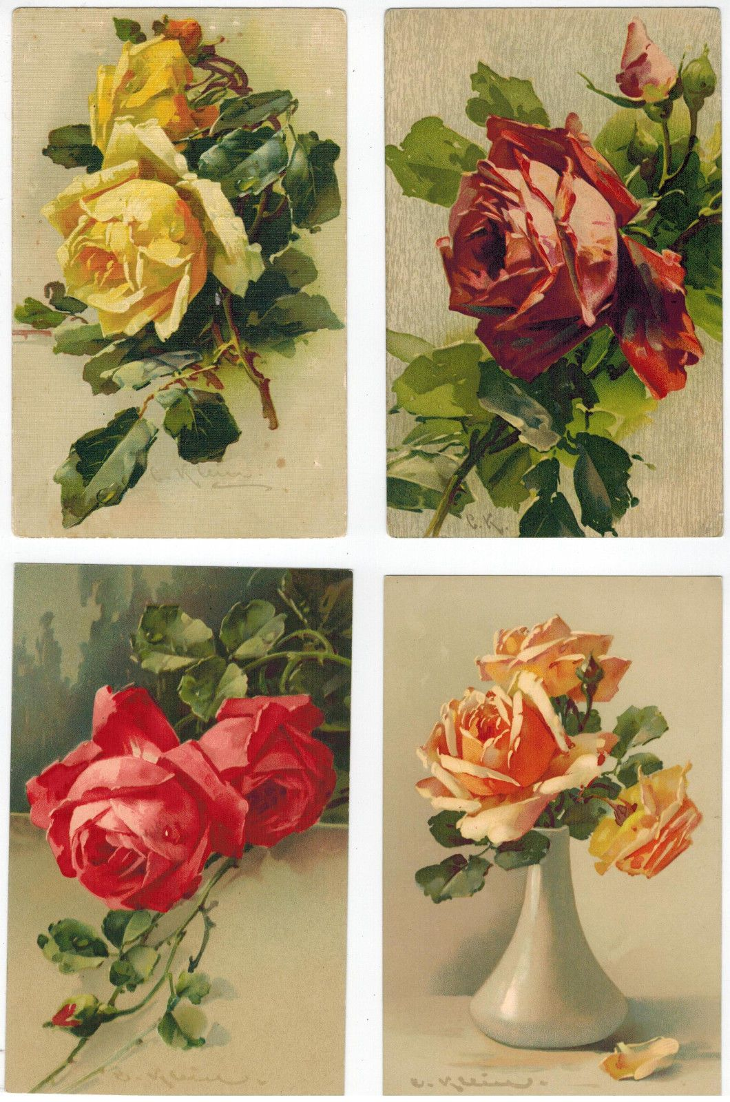 art cards of catherine klein roses europe from s