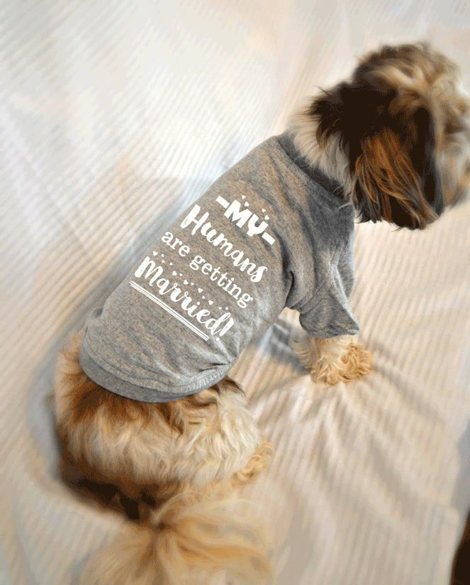 Wedding Gifts For Dog Lovers: My Humans Are Getting Married Dog T-Shirt. Marriage
