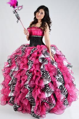 e1840fcee1 Quinceaenra Dress  zebra  pink  fashion  quince  princess