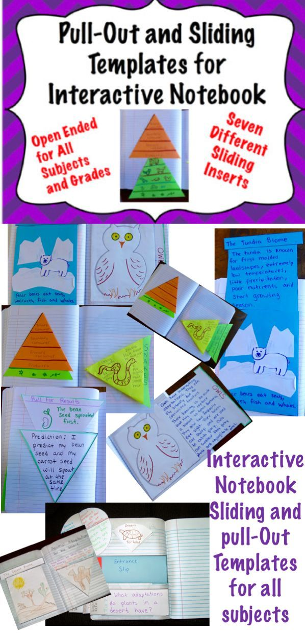 Foldable Pull Out And Slide Templates For Interactive