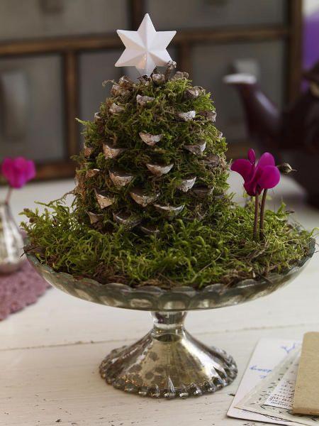 Winterliche Naturfundst Cke Basteln Mit Zapfen