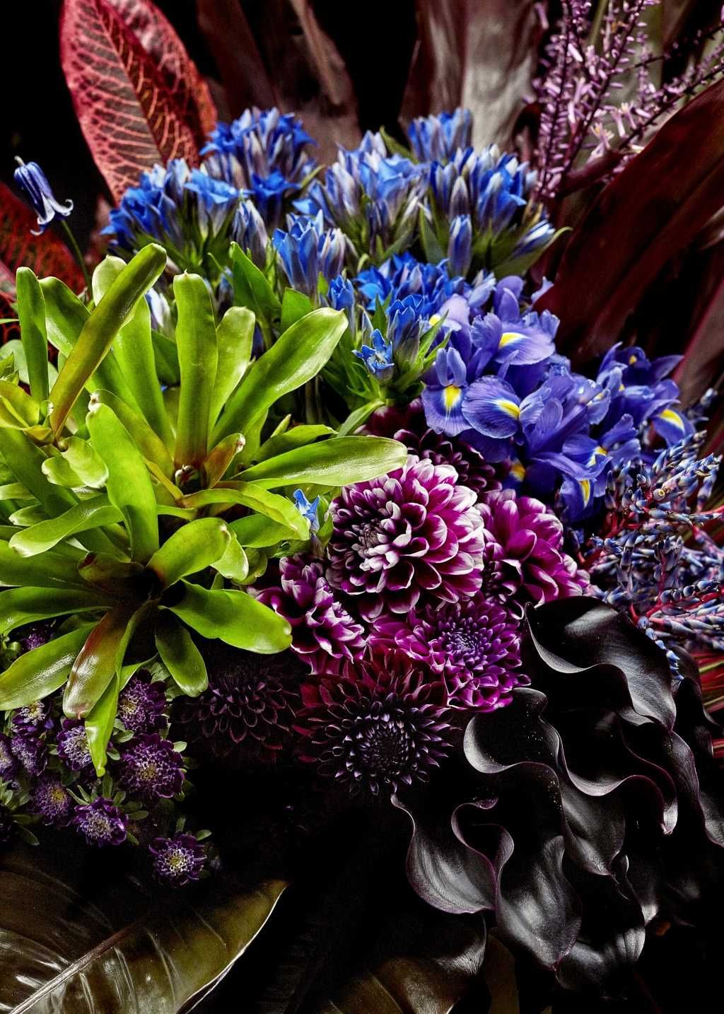 Pin By Lady Linda On Midnight Garden Flower Art Blooming Flowers Flowers
