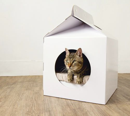 The Milk Box by MOISSUE is a milk carton-shaped home for cats, but as we mention over on Dog Milk, we think it would be perfect for small dogs.