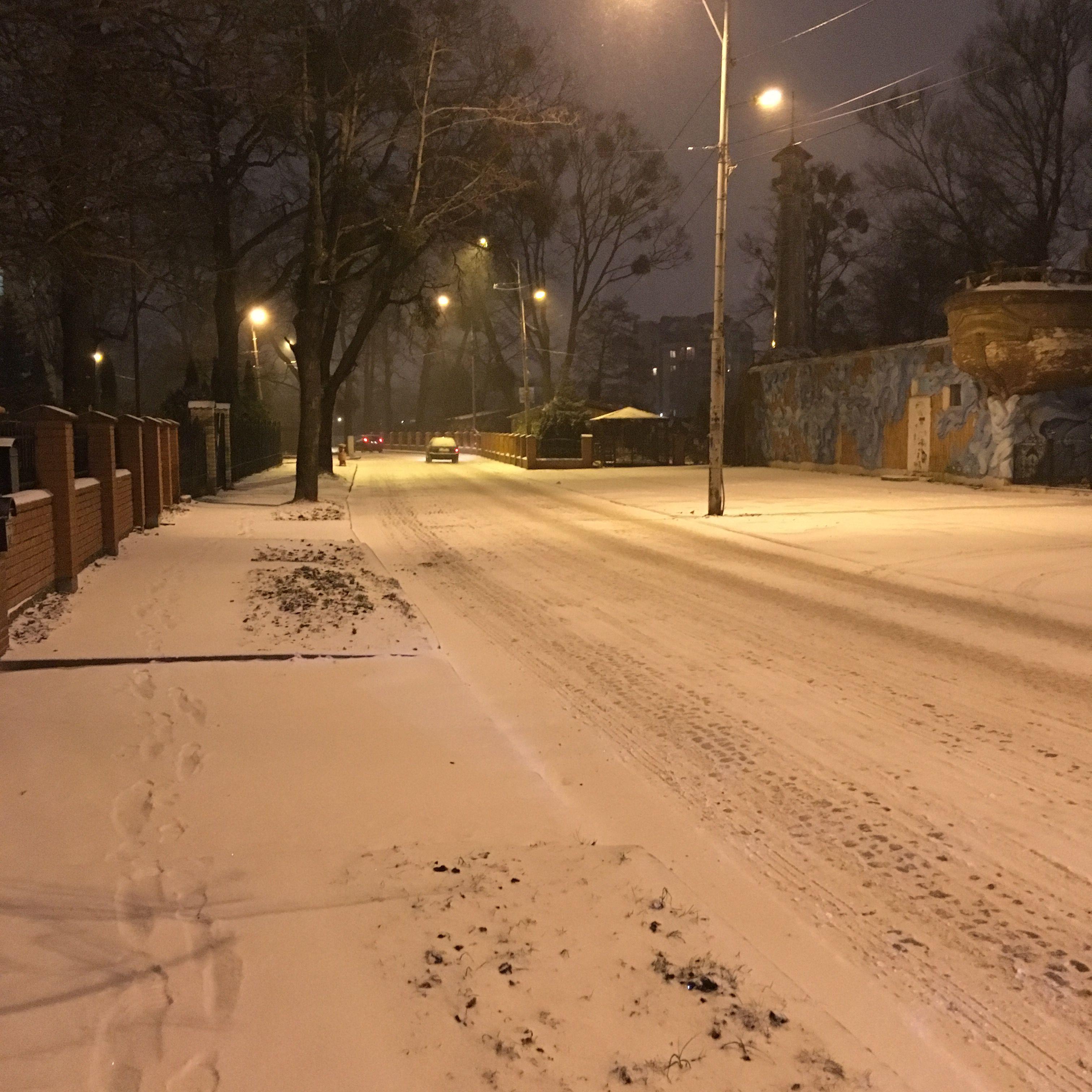 Зима пришла в Калининград. Фото: Vladimir Shveda