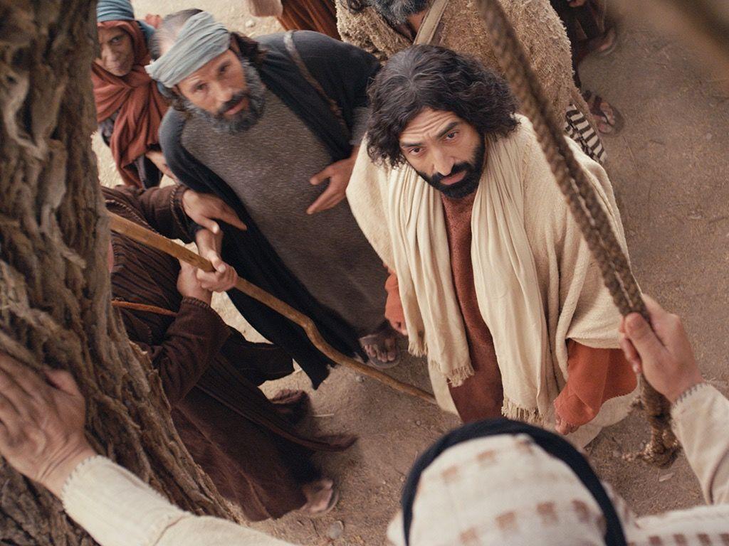 Free Visuals Jesus Meets Zacchaeus Jesus Meets Zacchaeus