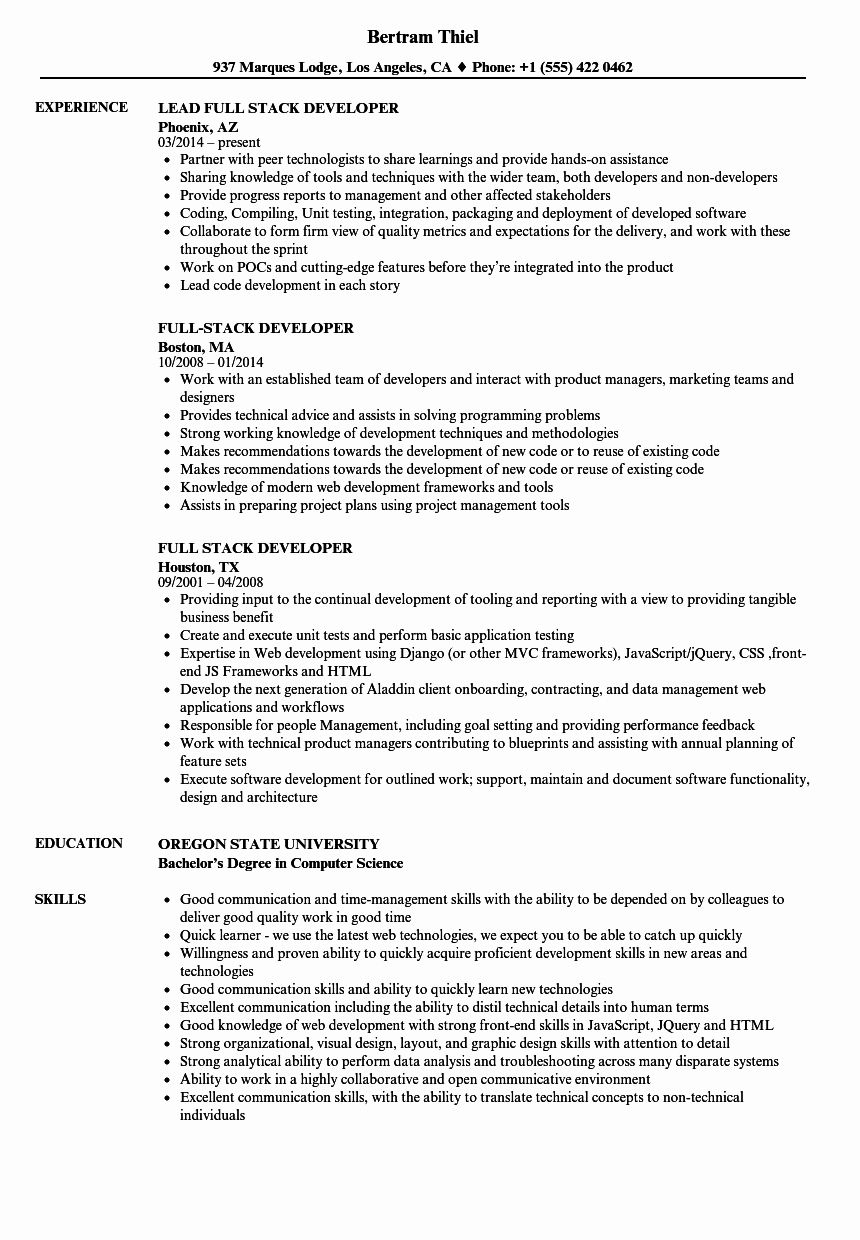 15++ Full stack developer resume sample Format