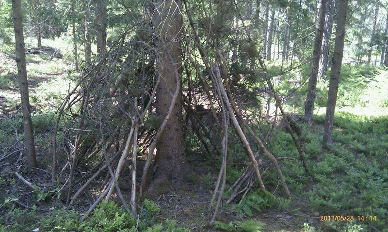 Waldversteck
