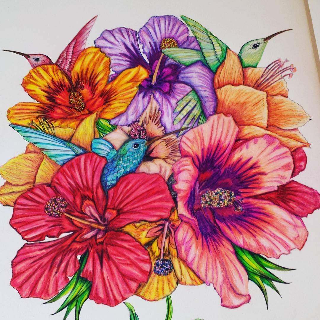 birdtopia #daisyfletcher #coloring | birdtopia | Pinterest | Adult ...