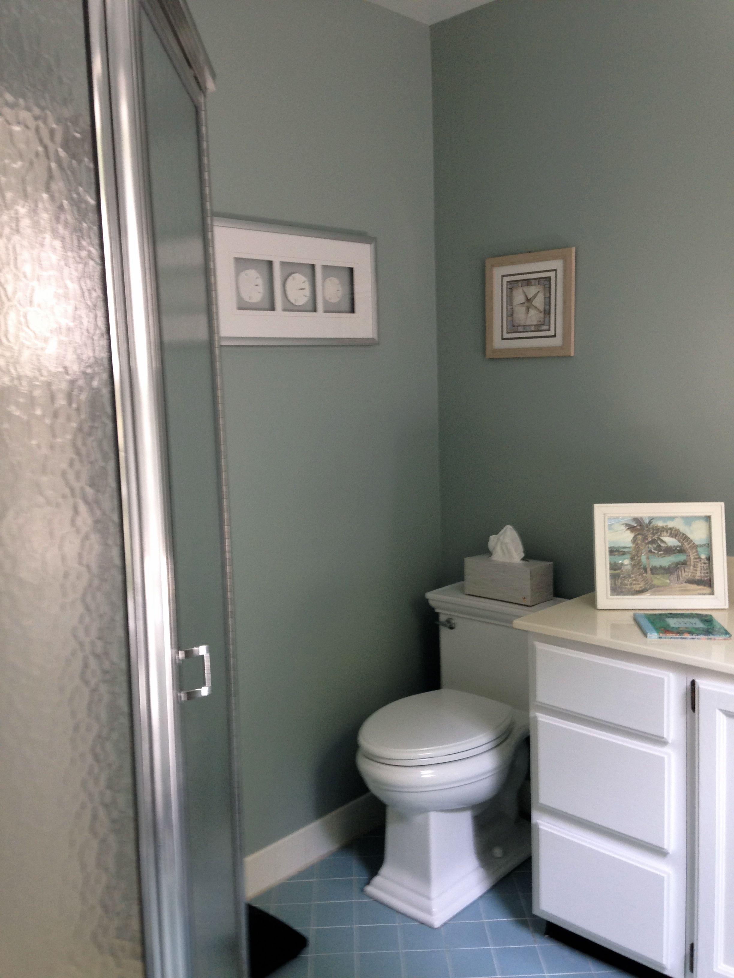 Sherwin williams silvermist maybe too dark for a windowless room