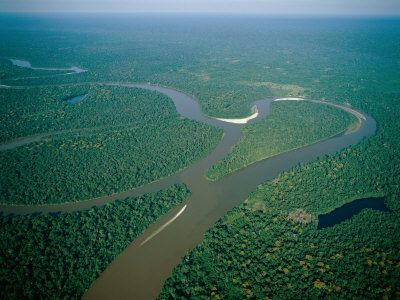 I Have Been To The Amazon Basin But Still My Heart Sings For The