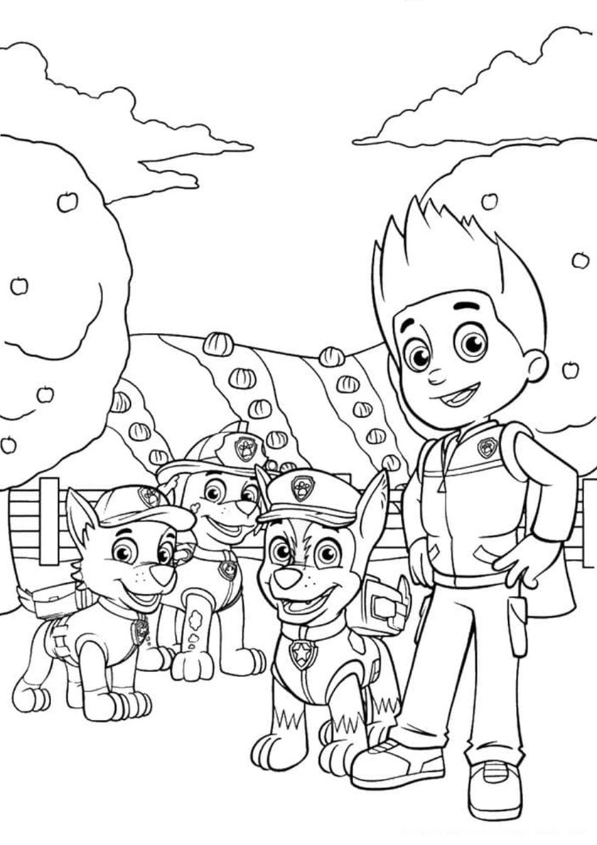 Harvest - high-quality free coloring from the category: Paw Patrol. More  printable picture…   Paw patrol coloring, Paw patrol coloring pages,  Cartoon coloring pages
