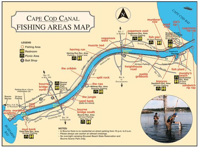Cape Cod Canal fishing spots Fishing  Knowledge Pinterest