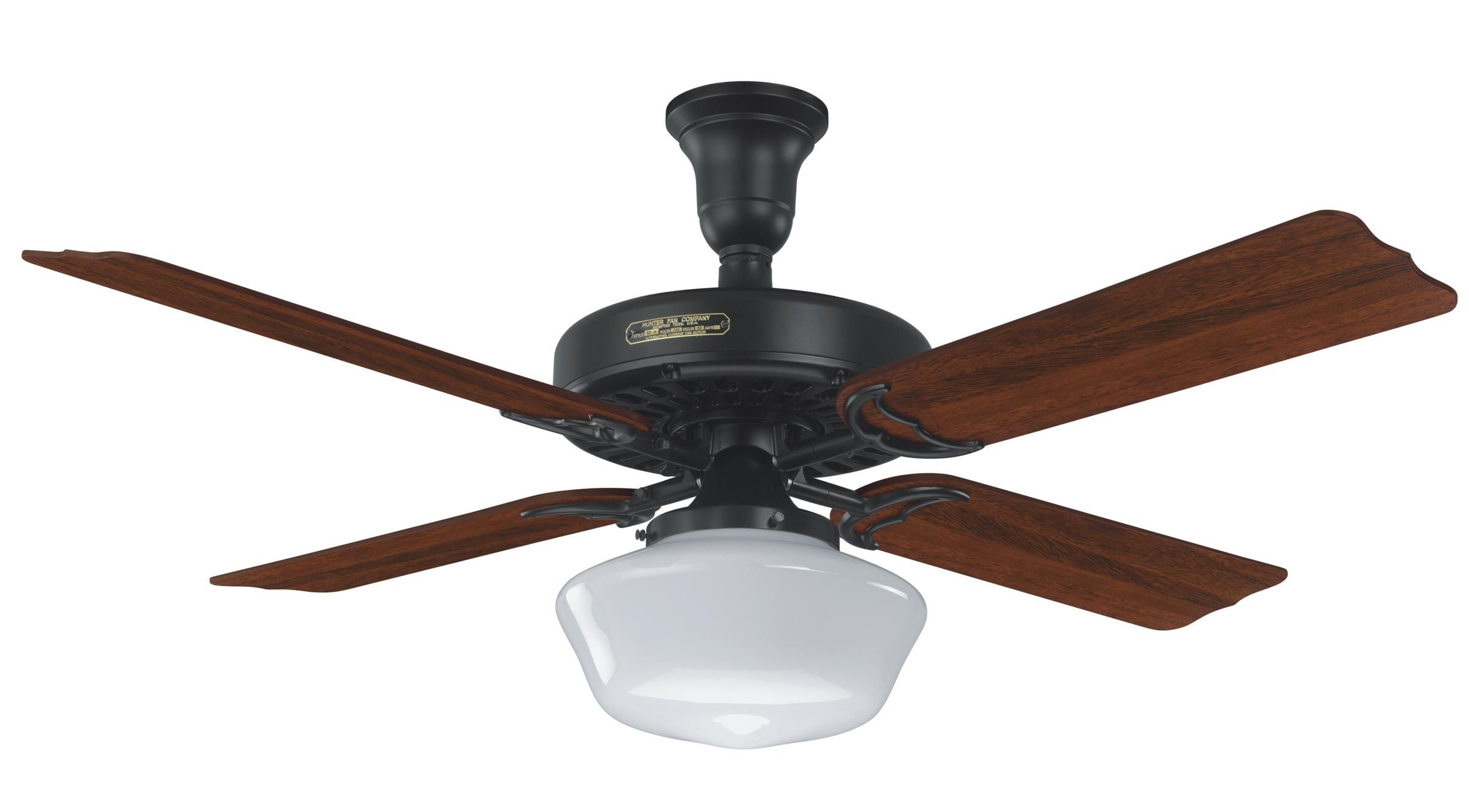 Hunter Ceiling Fan Globe Shades