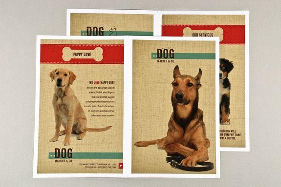 Cute Dogs Dog Walking Magazine Web Design Dog Design