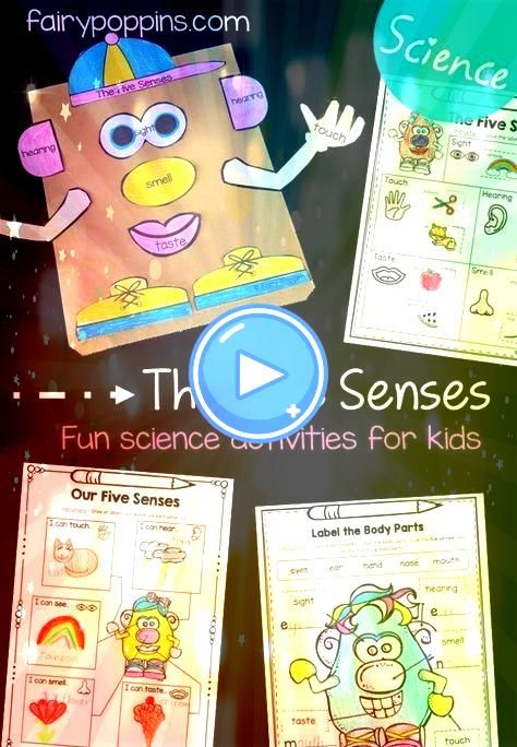 Senses Activities For Kids The five senses science worksheets games and activities Fairy Poppins Five Senses Activities For Kids The five senses science worksheets games...