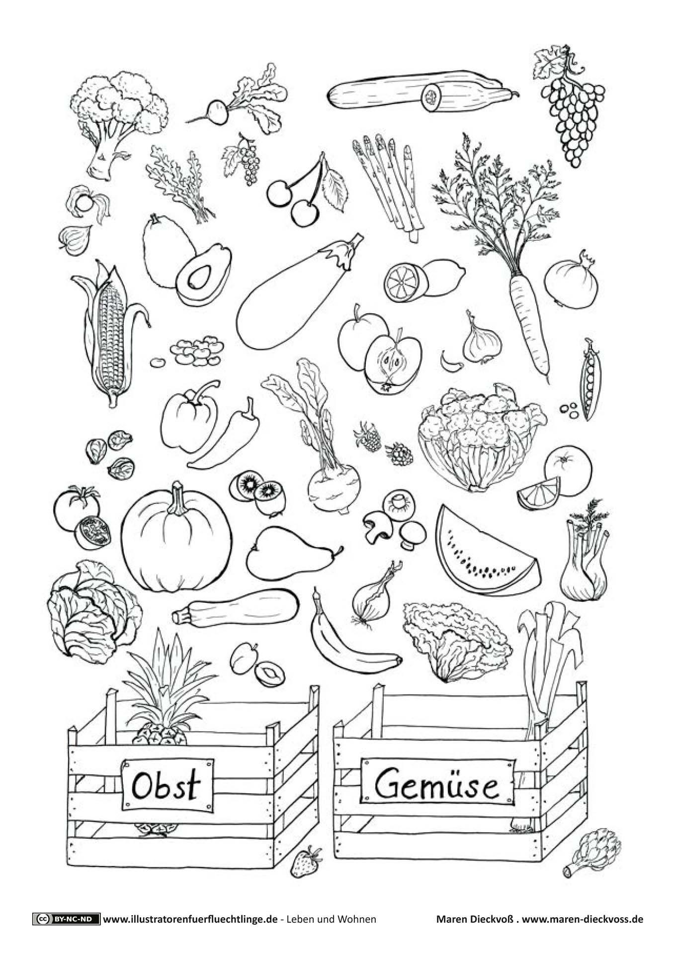 Gemüse Zeichnung