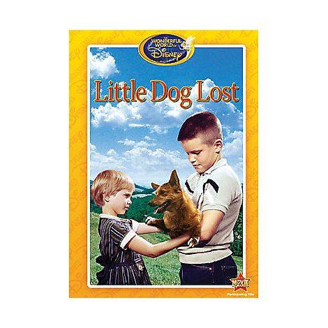 Little Dog Lost Dvd We Need Pinterest Movies Disney Movies