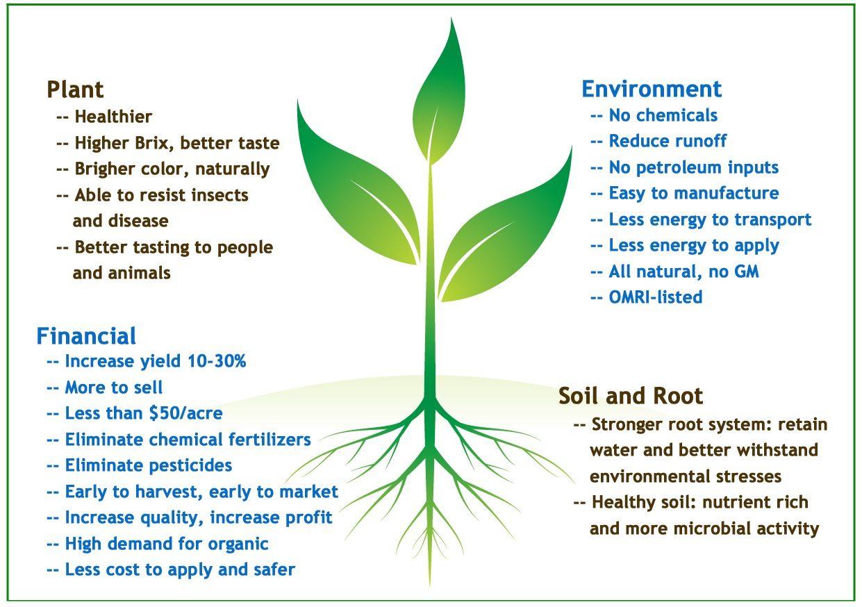 Benefits Of Sumagrow Farmorganix Com