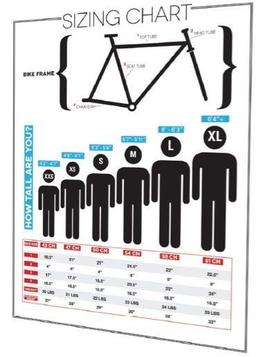 Road Bike Frame Sizes – Find & Fit The Right Bicycle for You ...