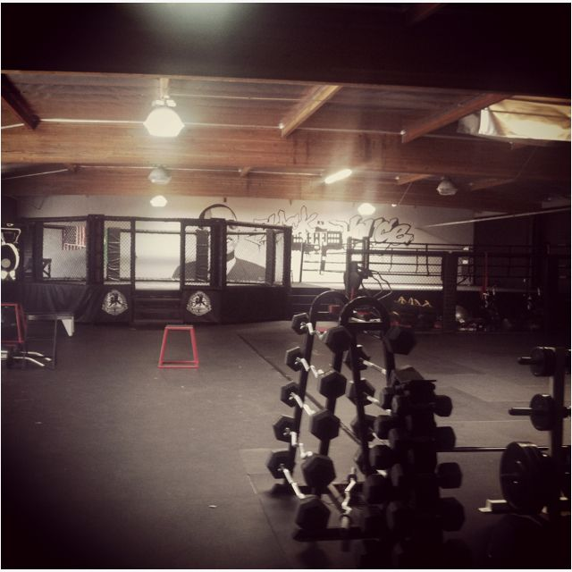 Fitness Mma Gym Owner I Will Have One Of These That I Can Play In Anytime Mma Gym Gym Owner Warehouse Gym