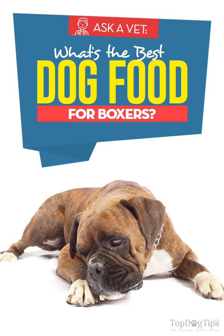 7 Vet Recommended Dog Foods For Boxers Dog Food Recipes Best Dog Food Dog Food Online