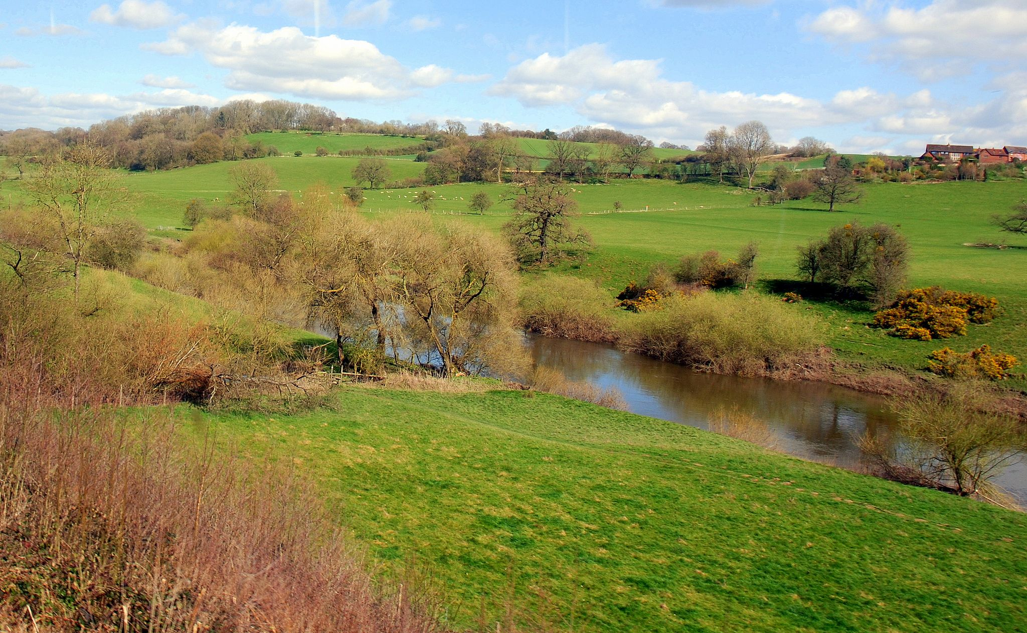 the river severn, which flows south of the forest of dean