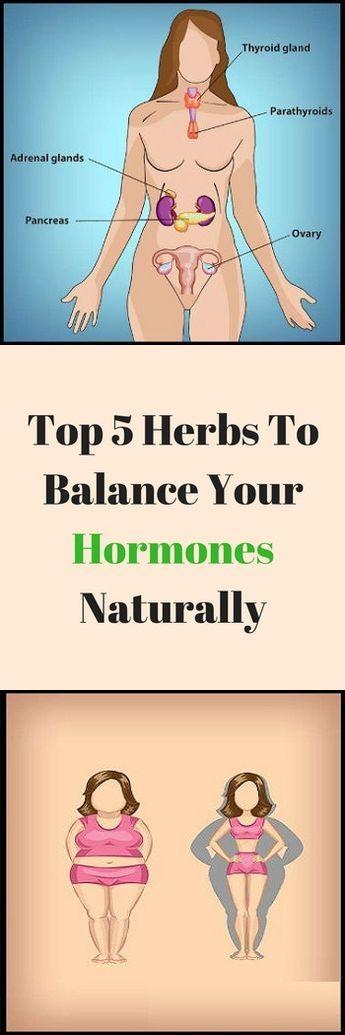Hypothyroidism Diet, Balance