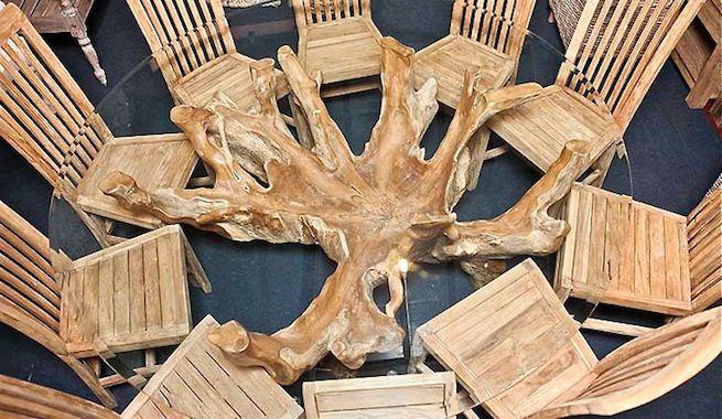Utilizar las raíces de los árboles como sustitutos de patas