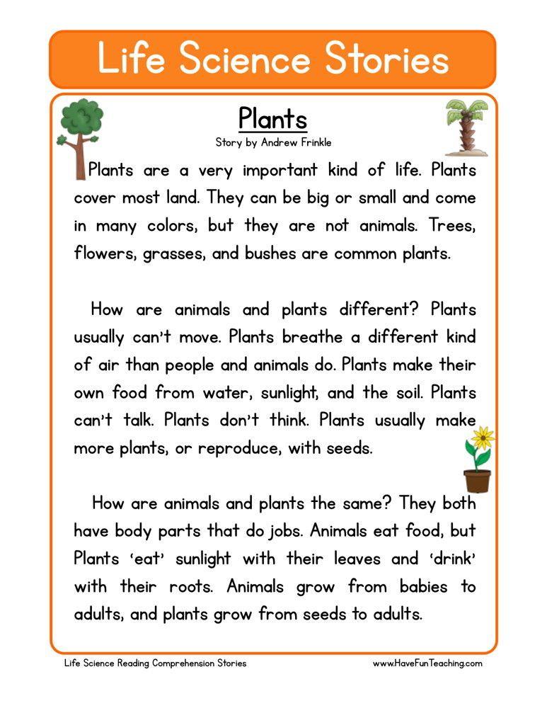 1st Grade Science Comprehension Worksheets