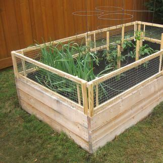 How To Make A Removable Rabbit Proof Fencing.  Http://averagepersongardening.com