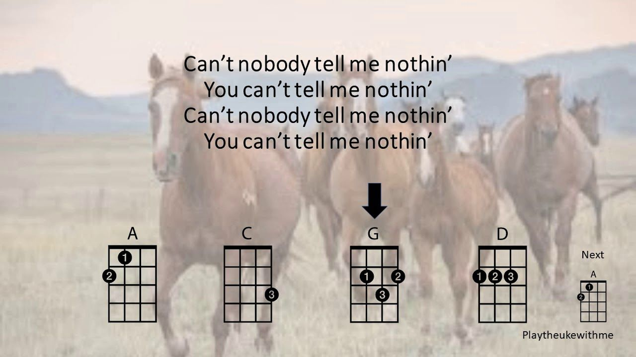 Old Town Road Ukulele Play Along Clean Edited Version With