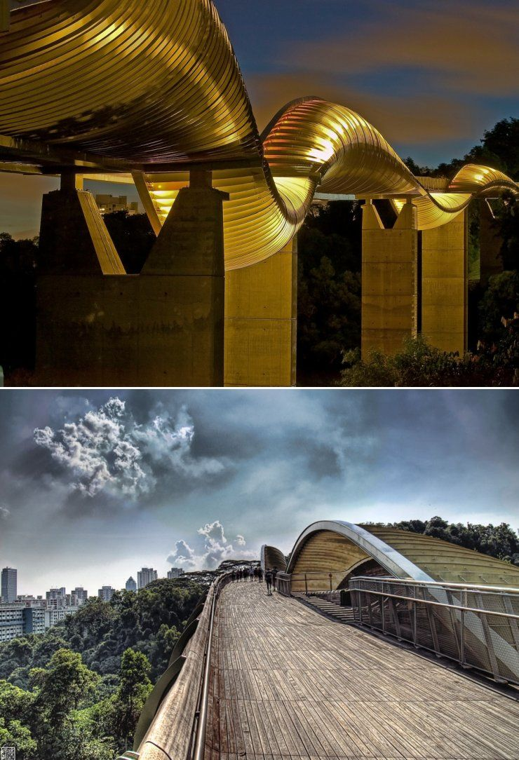 Henderson Waves Southern Ridges Singapore Henderson Waves Pedestrian Bridge Around The Worlds