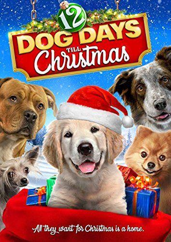 Robot Check Dog Movies Christmas Dvd Dogs