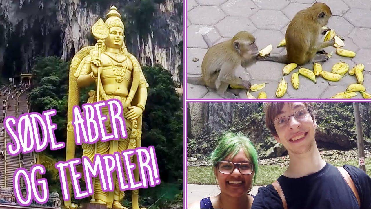 SØDE ABER OG TEMPLER - På ferie i Malaysia - https://www.youtube.com/watch?v=YDyqE39qUYY