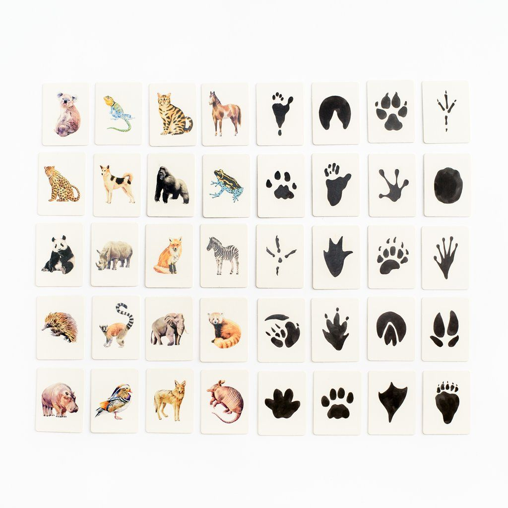 Animal Tracks Matching Game