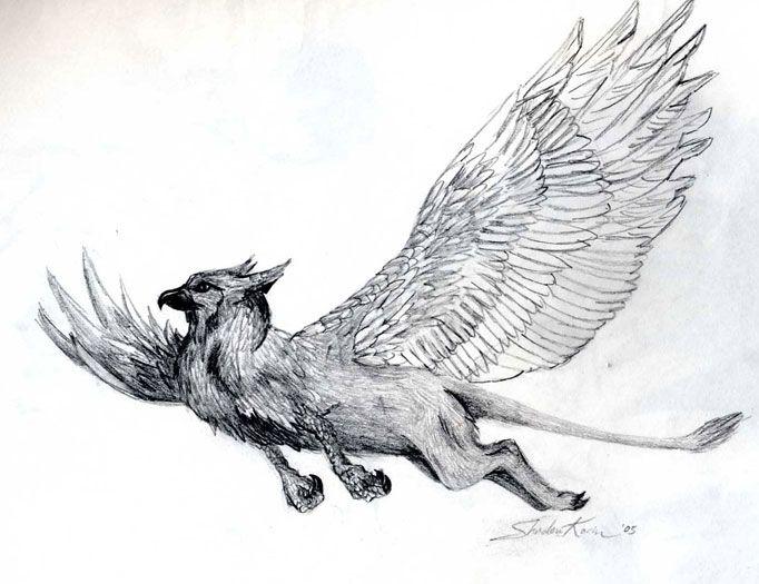 Pleasant Flight by ShadowKorin on DeviantArt