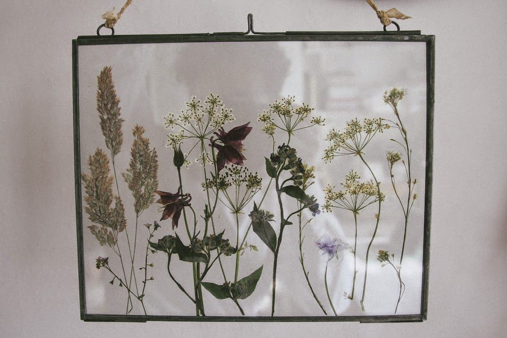 Pressed Wild Flowers In Glass Frames Crafting Amp Art For