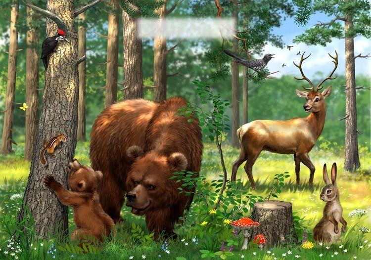 рисунок дикие животные в лесу природе