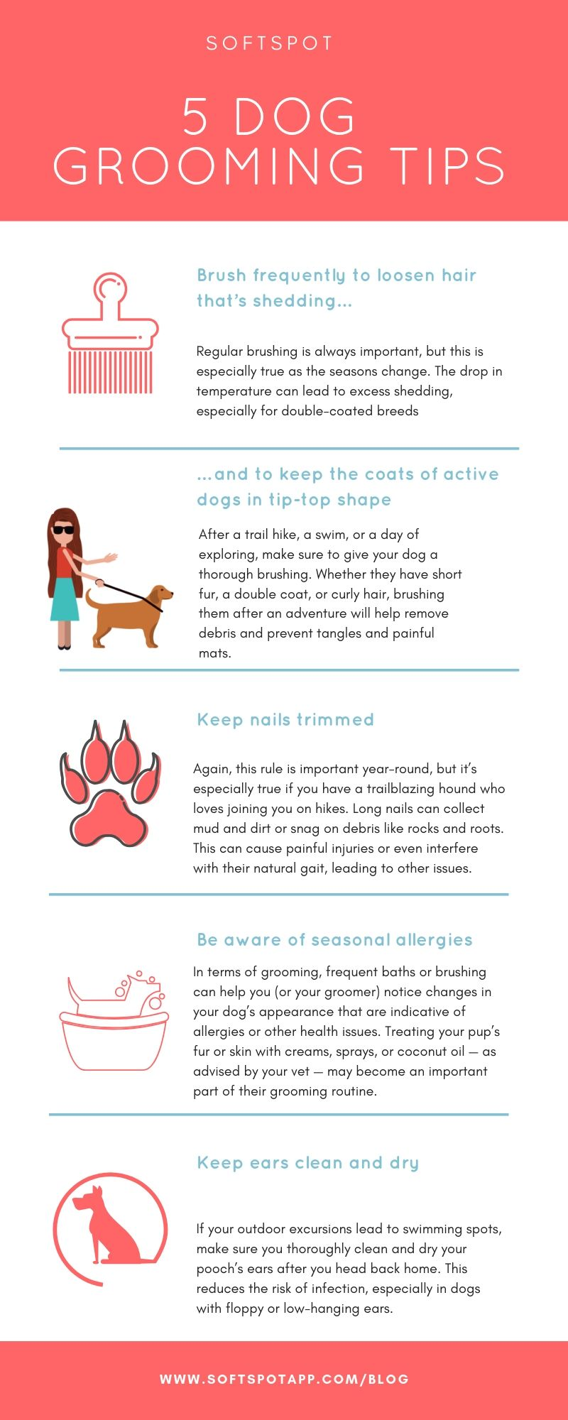 5 Dog Grooming Tips For Fall Dog Grooming Dog Activities