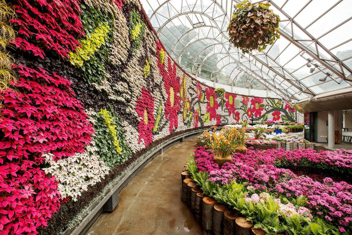 ed2146d8c98cc7f389c21d2d4e08e922 - What To Do In Royal Botanic Gardens Sydney