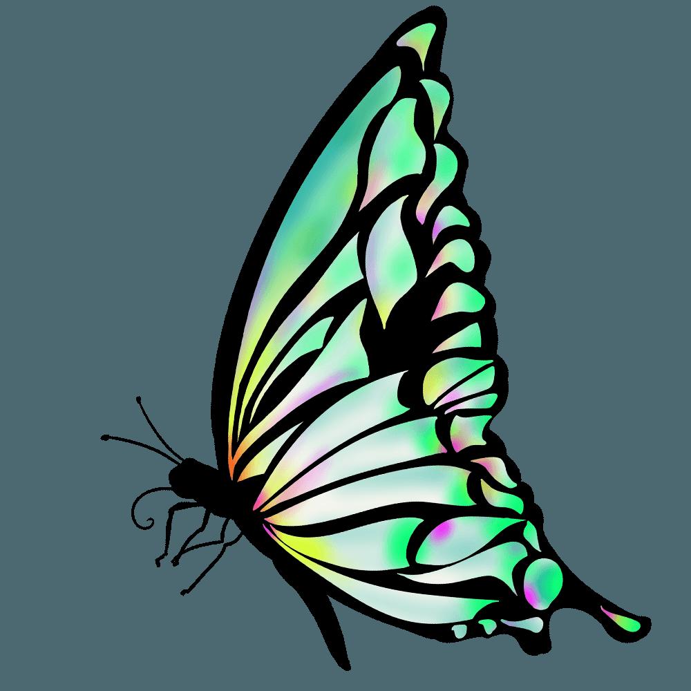 蝶イラスト 美しいアゲハや文様のチョウチョの無料素材 チコデザ 蝶イラスト イラスト 蝶