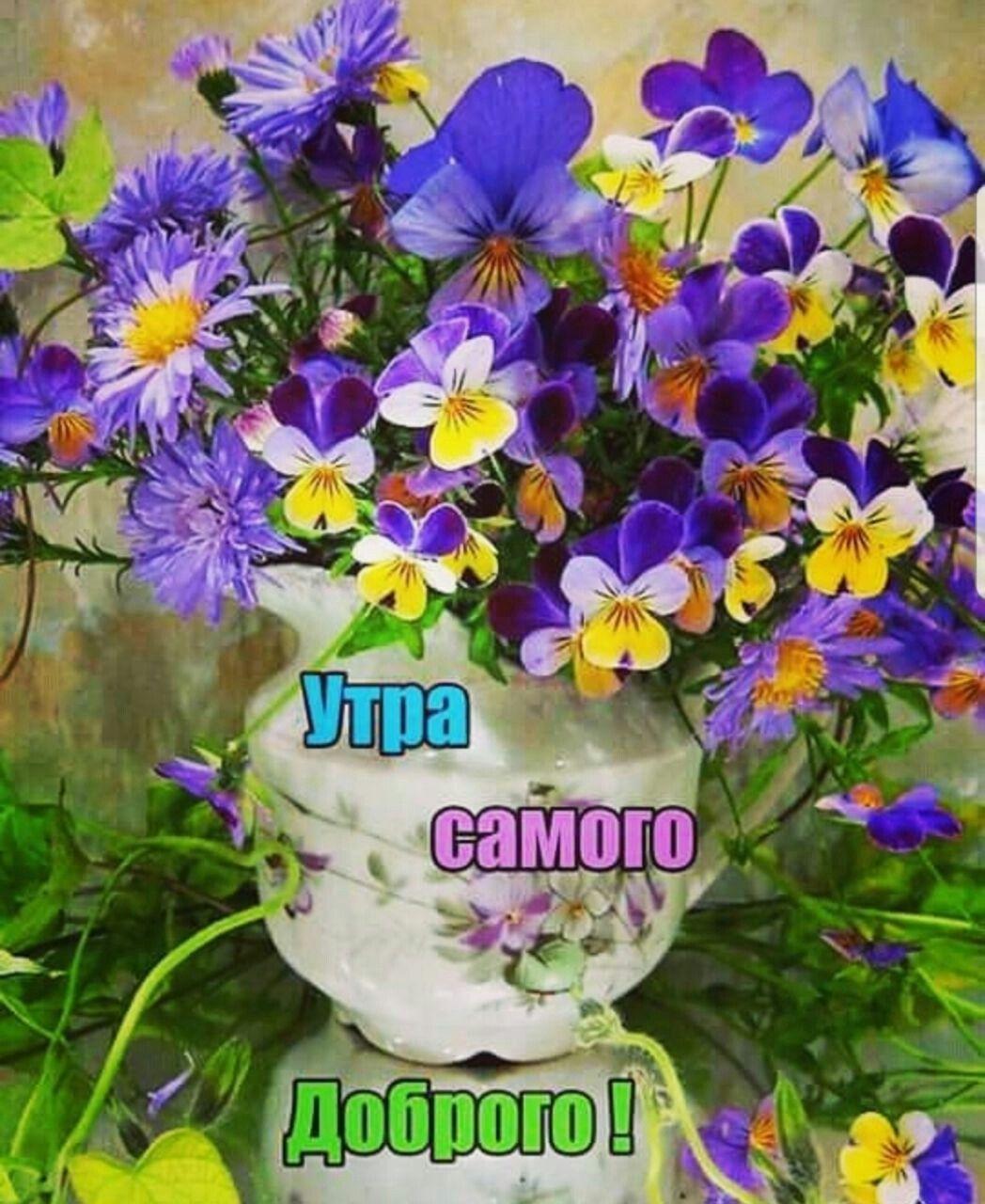 Красивые открытки с полевыми цветами с добрым утром, стихах днем россии