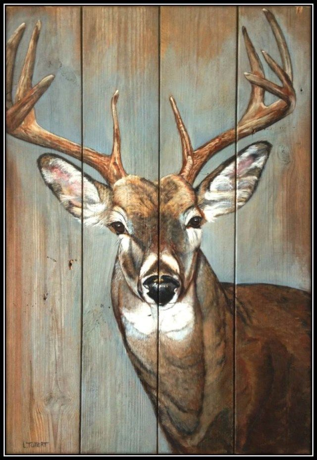Whitetail Deerlijst 1600x1200 Decoupage In 2019 Deer