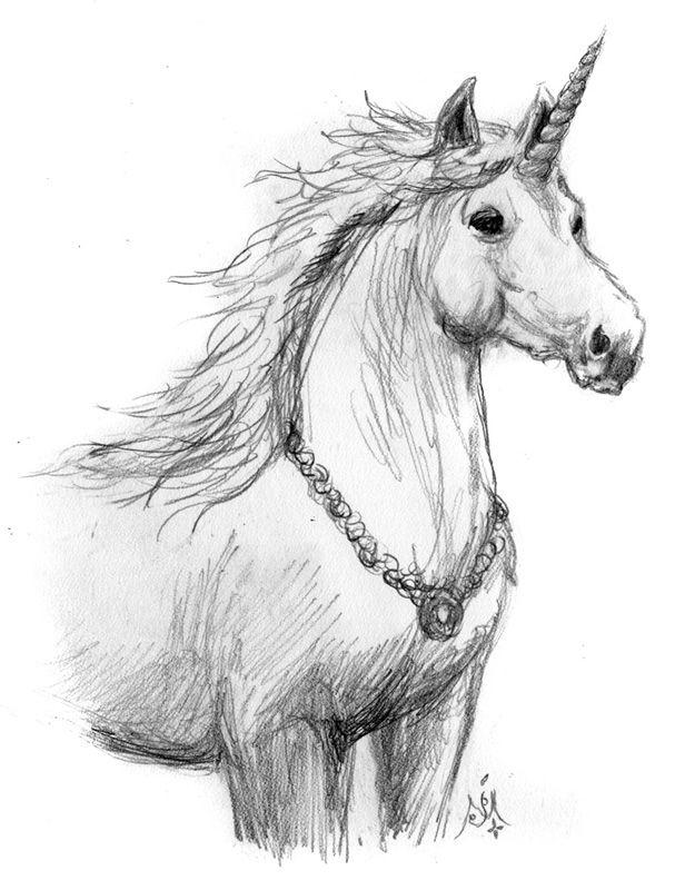Картинки единорогов рисунки карандашом