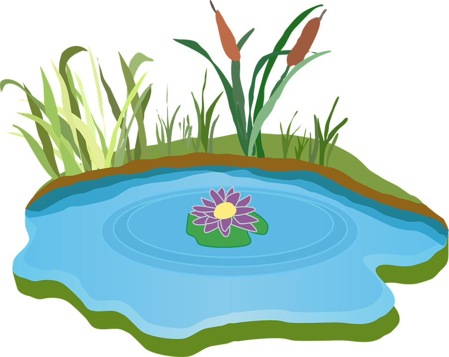 Free Image on Pixabay Pond, Water, Outdoor, Grass Clip