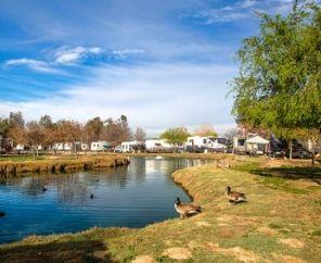 Wilderness Lakes Rv Resort Menifee Ca Accidental Rvers