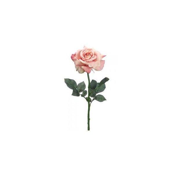 ed24b9a109405c724b103f7e2054f094 » Aesthetic Rose Drawing